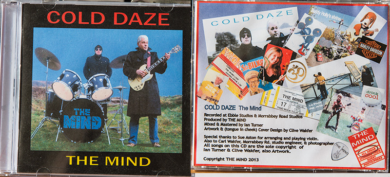 the-mind-cold-daze